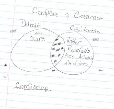 sketch: compare and contrast detroit and wilderness