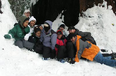 group falling in snow