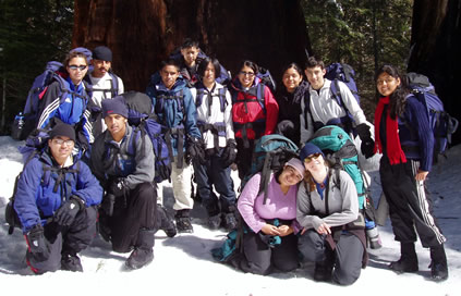 group by sequoias
