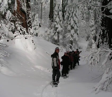 group on the trail