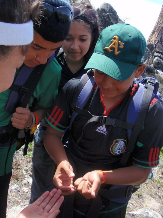 Juan and Bug