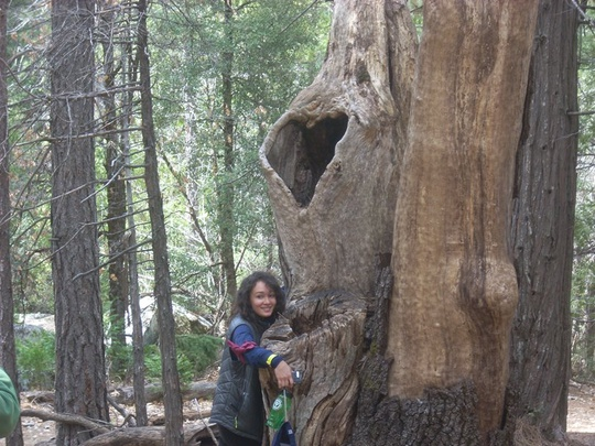 Kayla Hugs A Tree