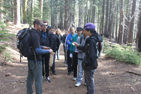 Group walk and talk