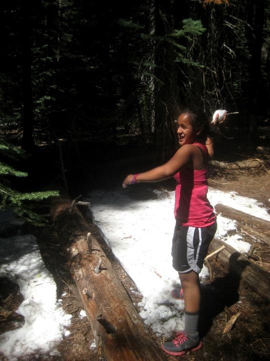 Taylor Snowball