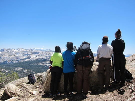 Group Looks at View
