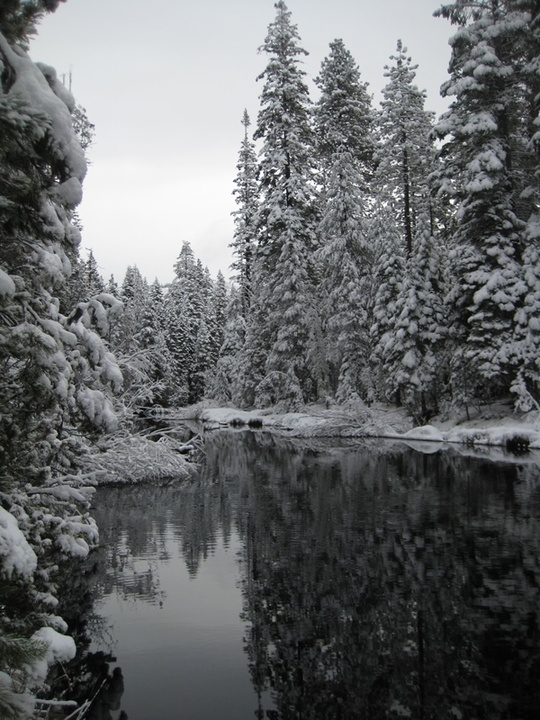 Group Snowy Merced River