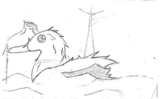 Mangas Duck