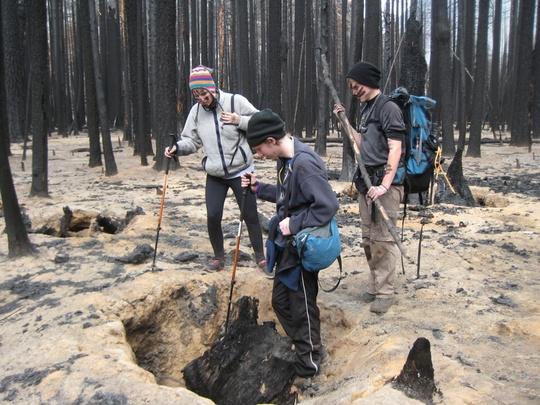 Fire Stump