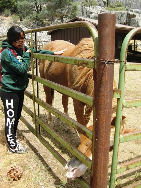 Cari and Horse