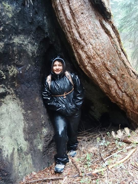 Valeria Sequoia