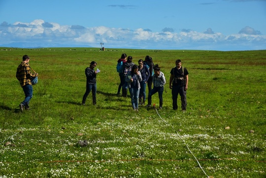 Group Transect